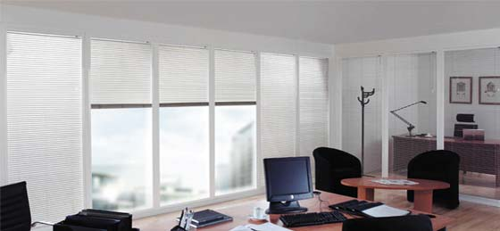 Blinds for businesses